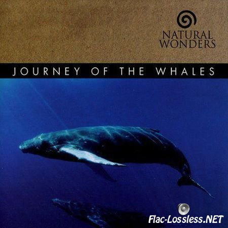 David Arkenstone - Journey of the Whales (2008) FLAC (image + .cue)
