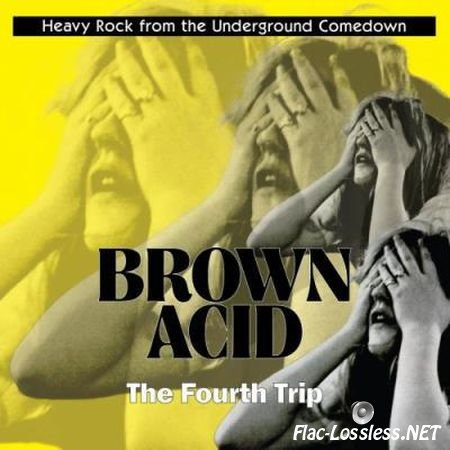 VA - Brown Acid: The Fourth Trip (2017) FLAC