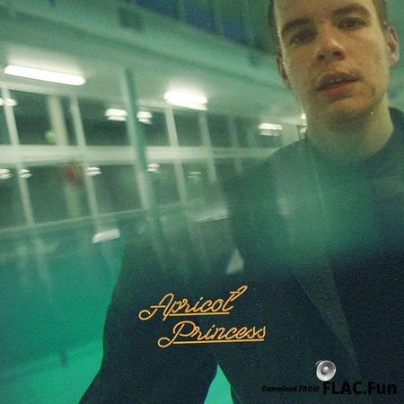 Rex Orange County – Apricot Princess (2017) FLAC (tracks)