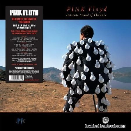 Pink Floyd - Delicate Sound Of Thunder (1988, 2017) [Vinyl] FLAC (tracks)