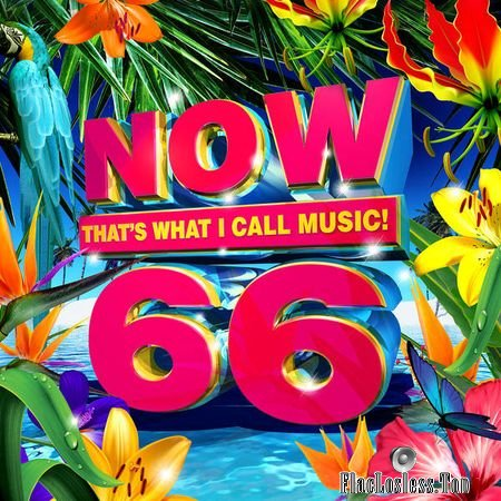 VA - Now Thats What I Call Music! 66 (US) (2018) FLAC