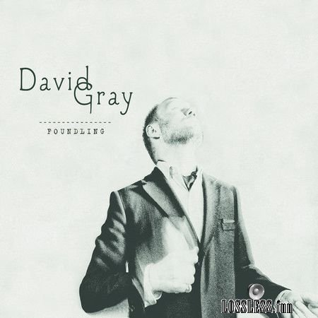 David Gray - Foundling (2010) (2CD) FLAC