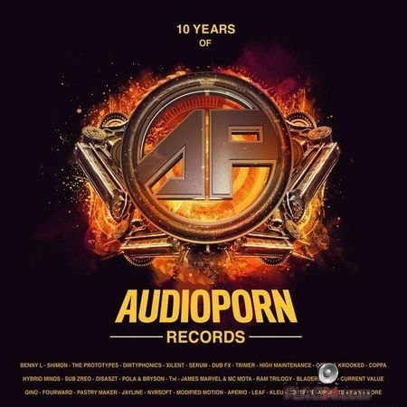 VA - 10 Years of Audioporn Records LP (2018) FLAC (tracks)