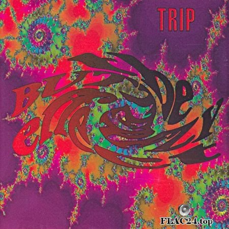 The Butterfly Effect - Trip (1991) FLAC (image+.cue)