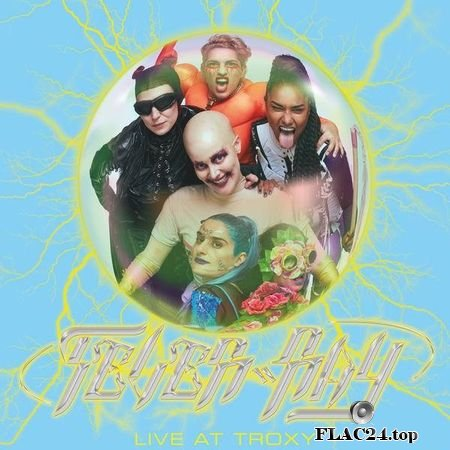Fever Ray - Live at Troxy (2019) (24bit Hi-Res) FLAC (tracks)