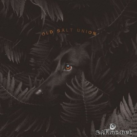 Old Salt Union – Where The Dogs Don't Bite (2019)