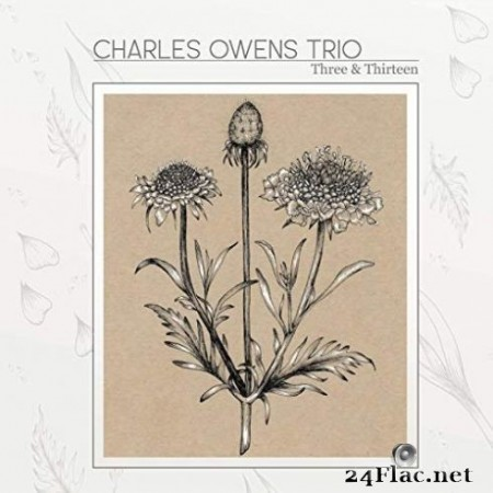 Charles Owens Trio - Three and Thirteen (2019)