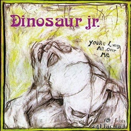 Dinosaur Jr. - You're Living All Over Me (2019)