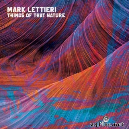 Mark Lettieri - Things of That Nature (2019)