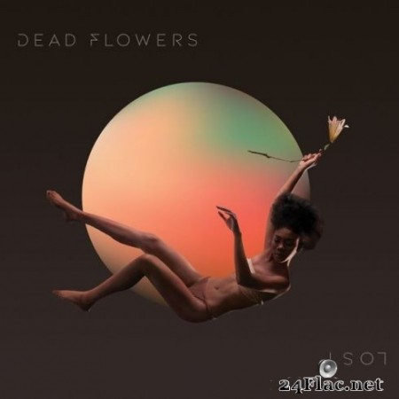 Dead Flowers - Lost (2019) Hi-Res