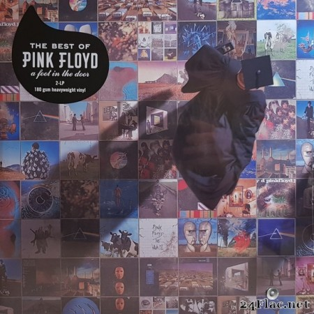 Pink Floyd - A Foot In The Door (The Best Of Pink Floyd) (2018) Vinyl
