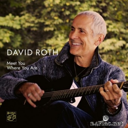 David Roth - Meet You Where You Are (2020) Hi-Res