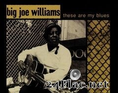 Big Joe Williams - These Are My Blues (Live) (2020) FLAC