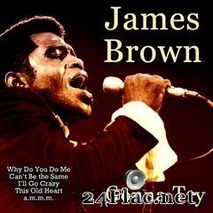 James Brown - Gonna Try (2020) FLAC