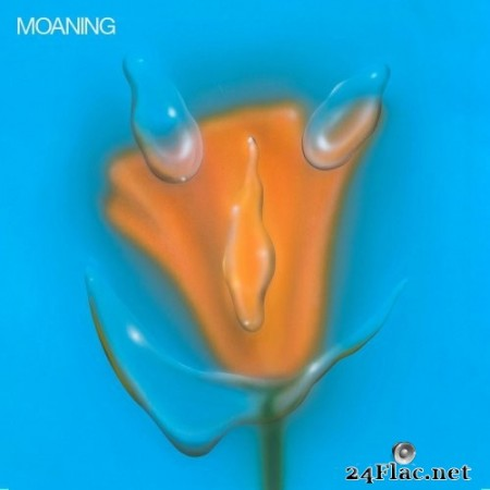 Moaning - Uneasy Laughter (2020) Hi-Res