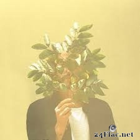 FKJ - French Kiwi Juice (2017) FLAC