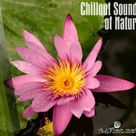 VA - Chillout Sounds Of Nature (2018) [FLAC (tracks)]