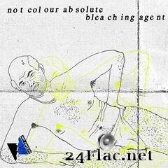 Bleaching Agent - Not Colour Absolute (2020) FLAC
