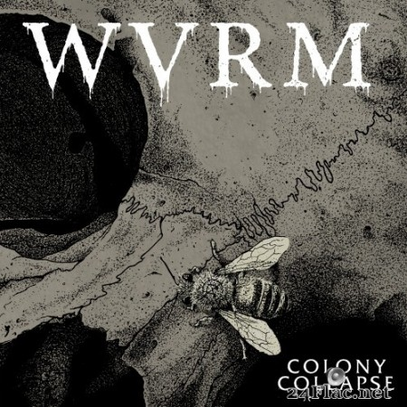 WVRM - Colony Collapse (2020) Hi-Res