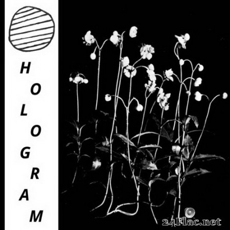 Hologram - Build Yourself Up So Many Times Only To Be Brought Down Again And Again (2020) Hi-Res