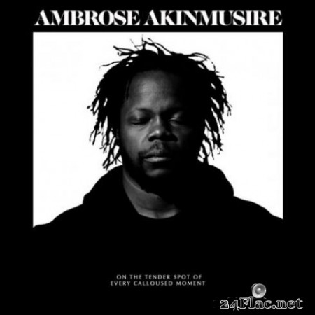 Ambrose Akinmusire - On The Tender Spot Of Every Calloused Moment (2020) Hi-Res