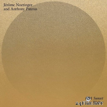 Jérôme Noetinger - A Sunset For Walter (2020) Hi-Res