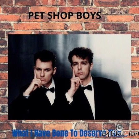 Pet Shop Boys - What I Have Done To Deserve This... MEGAMIX? (2020) [FLAC (tracks)]