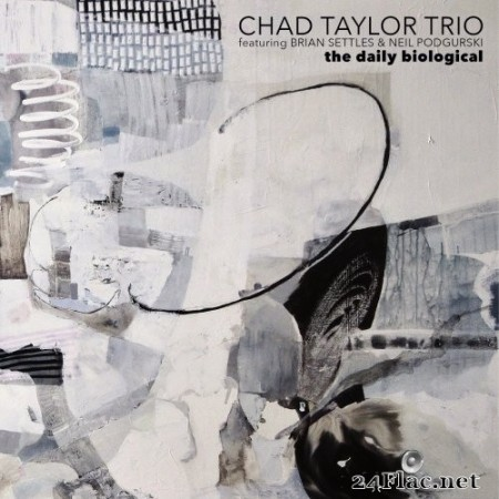 Chad Taylor Trio - The Daily Biological (2020) Hi-Res