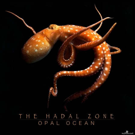 Opal Ocean - The Hadal Zone (2020) Hi-Res