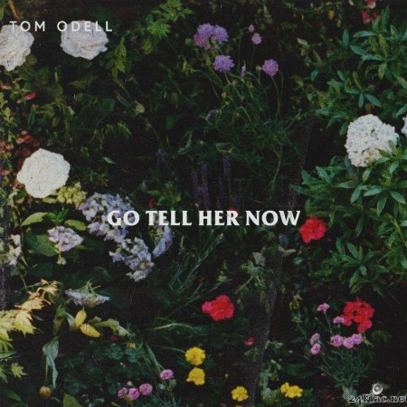 Tom Odell - Go Tell Her Now (Acoustic) (2019) [FLAC (tracks)]