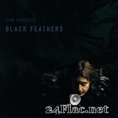 Sam Brookes - Black Feathers (2020) FLAC