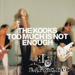 The Kooks - Too Much Is Not Enough (Deluxe Edition) (2020) FLAC