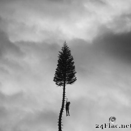 Manchester Orchestra - A Black Mile To The Surface (2017) [FLAC (tracks)]
