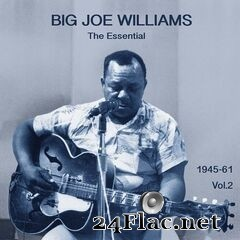 Big Joe Williams - The Essential Big Joe Williams 1945-1961, Vol. 2 (2020) FLAC