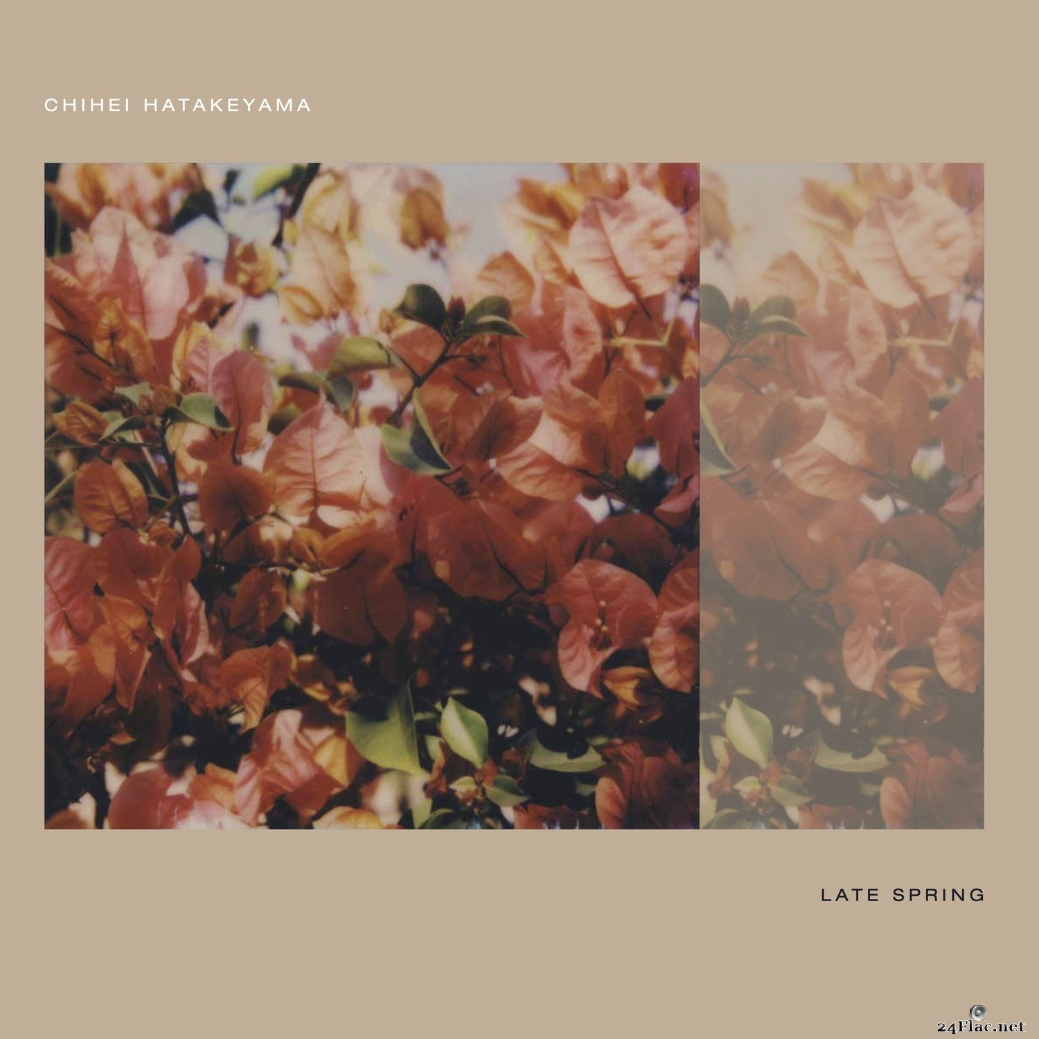 Chihei Hatakeyama - Late Spring (2021) Hi-Res