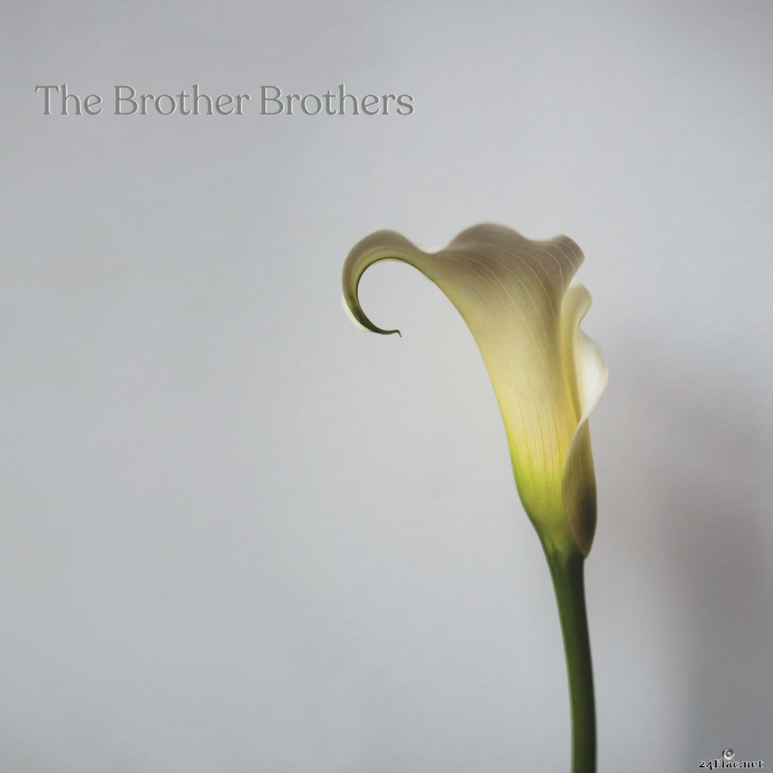 The Brother Brothers - Calla Lily (2021) Hi-Res