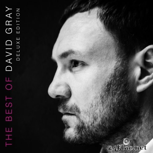 David Gray - The Best Of David Gray (Deluxe Edition) (2016) Hi-Res